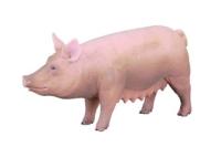 Свинья 9,5 см